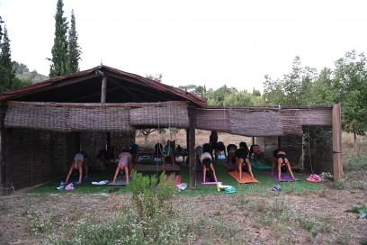 Retiros de yoga con Violeta